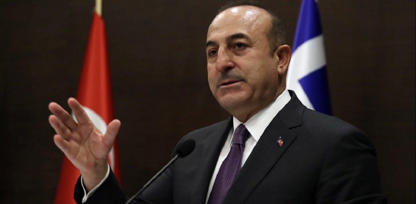 Turkey backs Arab League's decision on the Palestine issue