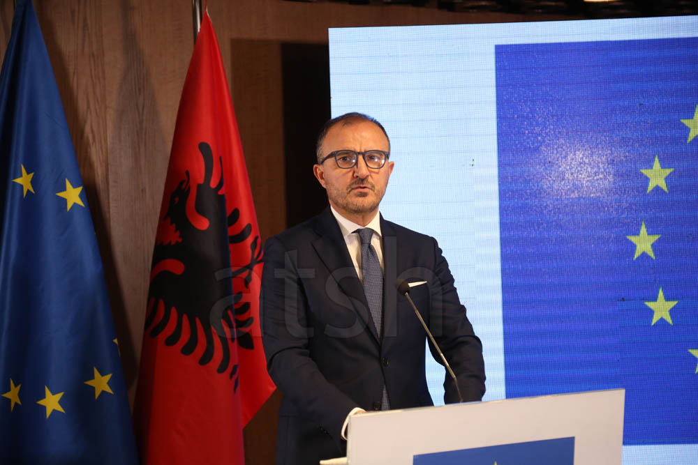 Soreca: Negotiating framework for Albania has been accepted; still more work to be done