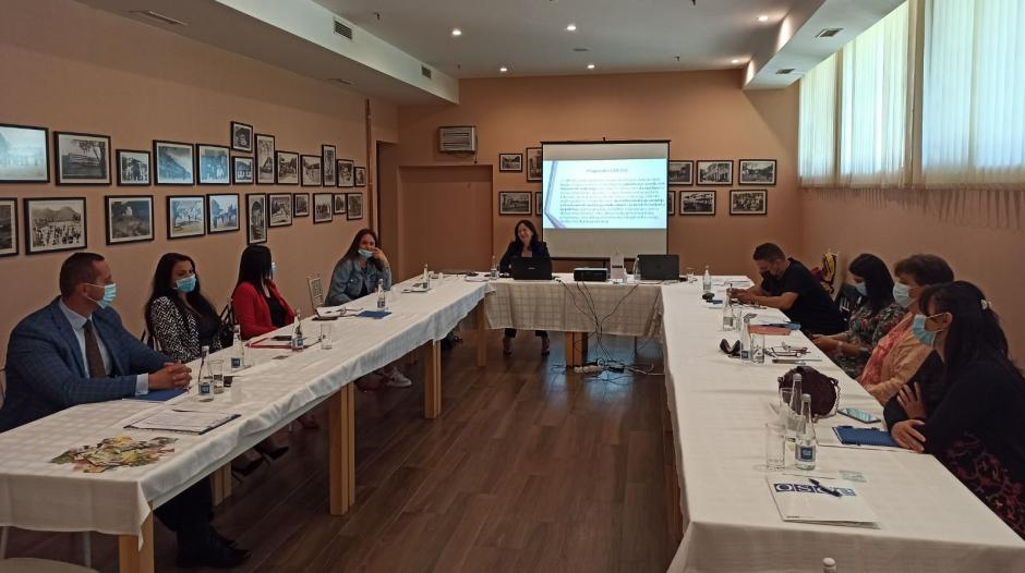 OSCE Mission to Montenegro supports prevention and combating domestic violence at local level