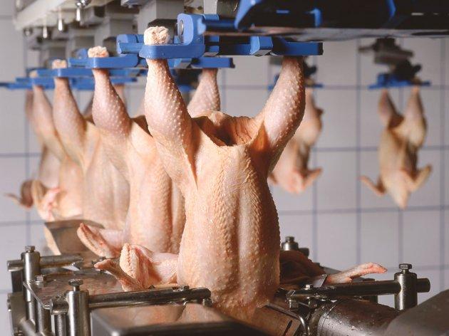 Η ΕΕ προετοιμάζεται να ανοίξει τις πόρτες της για τα κοτόπουλα από την Β-Ε