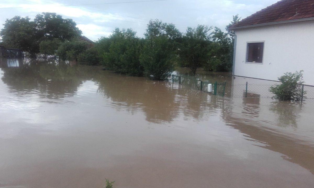 """Εν μέσω αναφορών σχετικά με καταστροφικές πλημμύρες, η Πρωθυπουργός της Σερβίας αποτιμά τη ζημιά ως """"ελάχιστη"""""""