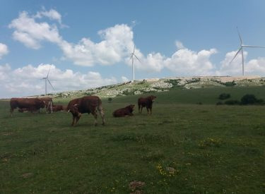 Το Κέντρο Περιβάλλοντος της B-E καταγγέλλει απόφαση της Δημοκρατίας Σέρπσκα