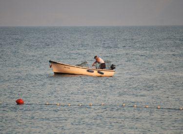 Κροατία: Στήριξη του τομέα της αλιείας από την ΕΕ