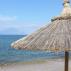 Έτοιμη η Ρουμανία για την εφαρμογή του πράσινου ψηφιακού πιστοποιητικού