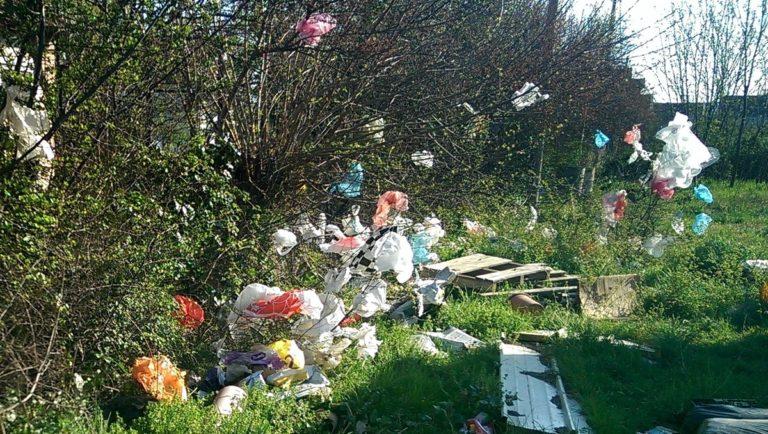 Crnogorci protiv plastičnih vrećica