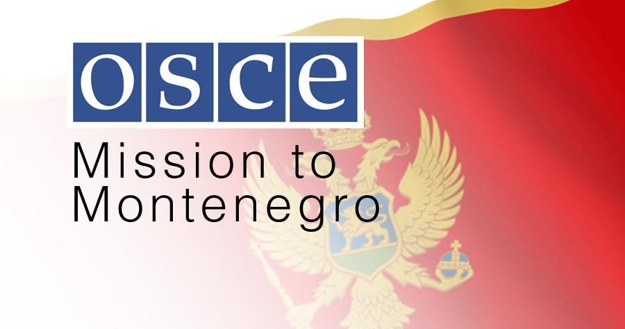 Državna izborna komisija Crne Gore procenila potrebe za iduću godinu