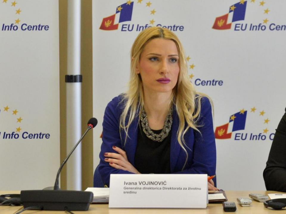 """Vojinović: """"Princip """"zagađivač plaća"""" već se u određenoj meri primenjuje"""""""