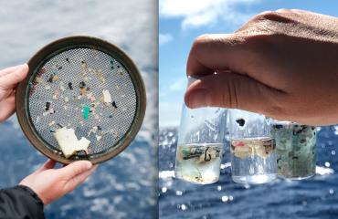 Hrvatska: Studentska inovacija može spasiti more