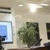 Kosovo: Kurti i Merkel razgovarali o dijalogu, vakcinama i radnim mestima